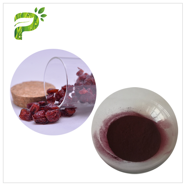 Cranberry Extract - Wound healing