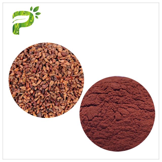 Grape Seed Extract - Skin Anti-oxidation