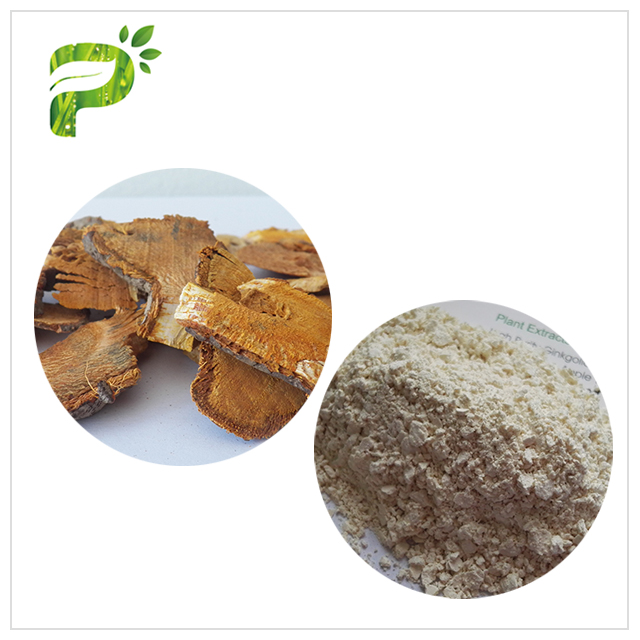 Giant Knotweed Extract - Skin-Anti-oxidation