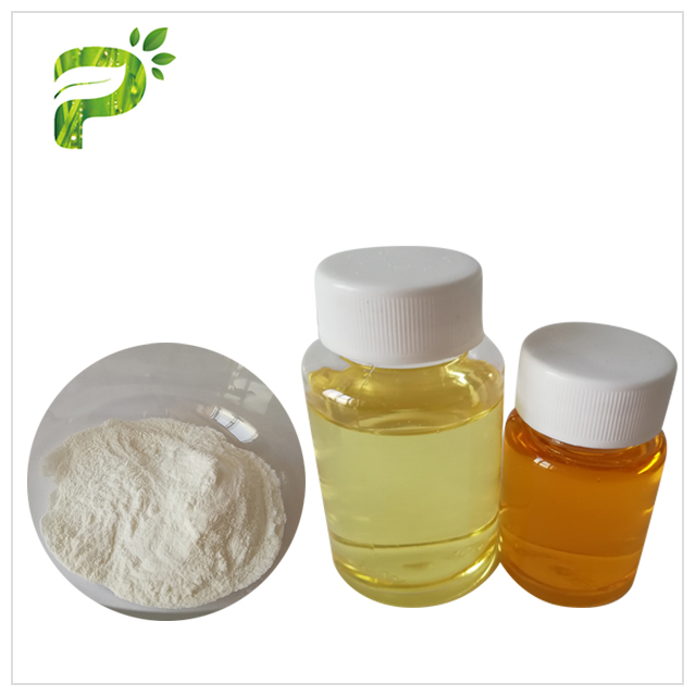 Pumpkin Seed Oil Powder